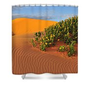 Coral Morning Shower Curtain
