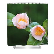 Coral Camellia 2 Shower Curtain