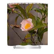 Coral Camellia Shower Curtain