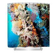 Coral Pillars Shower Curtain