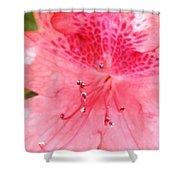 Coral Pink Azalea Goodness Shower Curtain