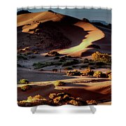 Coral Pink Sand Dunes Dawn Shower Curtain