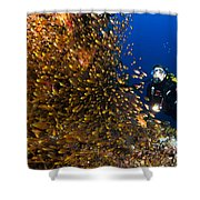Coral Reef And Diver  Shower Curtain