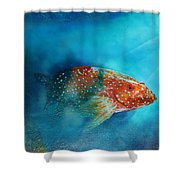 Coral Trout Shower Curtain