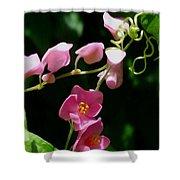 Coral Vine Flower Shower Curtain