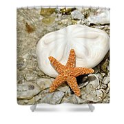 Core Of The Reef Shower Curtain