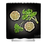 Coriander And Garlic Still Life. Shower Curtain
