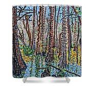 Corkscrew Swamp Sanctuary Shower Curtain