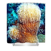 Corky Sea Finger Coral - The Muppet Of The Deep Shower Curtain