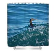 Cormorant In The Water Shower Curtain