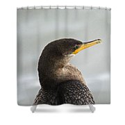 Cormorant Posing Shower Curtain