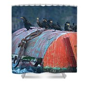 Cormorants On A Barrel Shower Curtain