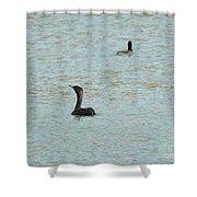 Cormorants On The Lake Shower Curtain