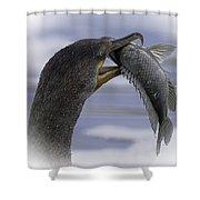 Cormorant's Whopper Dive Catch Shower Curtain