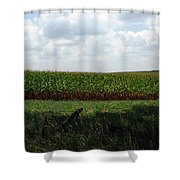Corn And Clouds Shower Curtain