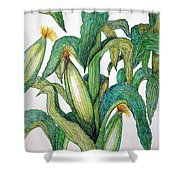 Corn And Stalk Shower Curtain