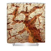 Corn Bread Crust Shower Curtain