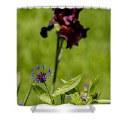 Corn Flower With A Friend Visiting Shower Curtain