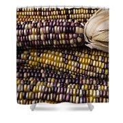Corn Kernals Shower Curtain