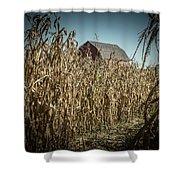 Corn Maze Shower Curtain