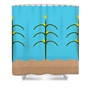 Corn Rows Shower Curtain
