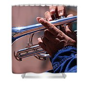 Cornet On Pearl Street Shower Curtain
