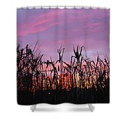 Cornfield Sunset Shower Curtain