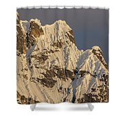 Cornices On The Rooster Comb Shower Curtain
