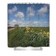 Cornish Daffodil Hedge Shower Curtain