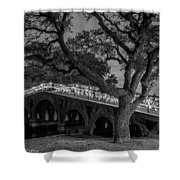 Corolla Bridge Shower Curtain