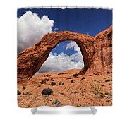 Corona Arch Shower Curtain