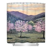 Corrales New Mexico Shower Curtain