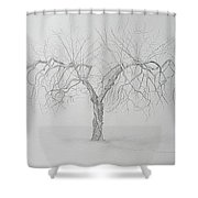 Cortland Apple Shower Curtain by Leah  Tomaino