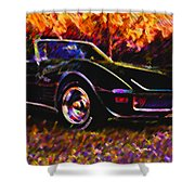 Corvette Beauty Shower Curtain