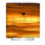 Corvus Silhouette  Shower Curtain