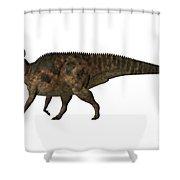 Corythosaurus On White Shower Curtain