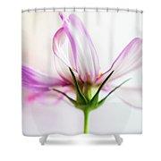 Cosmos 6 Shower Curtain