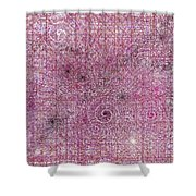 Cosmos Against Pink Mottled Glass 7-22-2015 #1 Shower Curtain