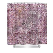 Cosmos Against Pink Mottled Glass 7-22-2015 #2 Shower Curtain