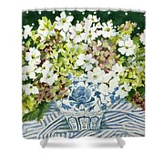 Cosmos And Hydrangeas In A Chinese Vase Shower Curtain
