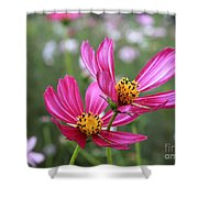 Cosmos In Tokyo Shower Curtain