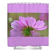 Cosmos Light Shower Curtain
