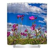 Cosmos Sky Shower Curtain