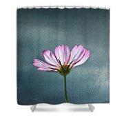 Cosmos - Summer Love Shower Curtain
