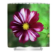 Cosmos Velouette Shower Curtain