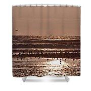 Costa Rica 040 Shower Curtain