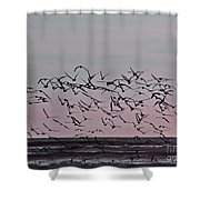 Costa Rica 045 Shower Curtain