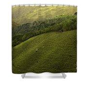 Costa Rica Pasture Shower Curtain