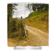 Costa Rica Path Shower Curtain