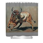 Costa Rican Red Bull Shower Curtain